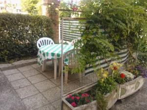 vrt (2)